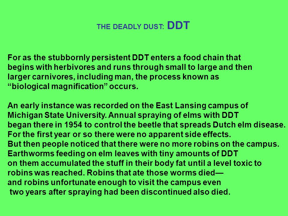 For as the stubbornly persistent DDT enters a food chain that begins with herbivores and runs through small to large and then larger carnivores, inclu