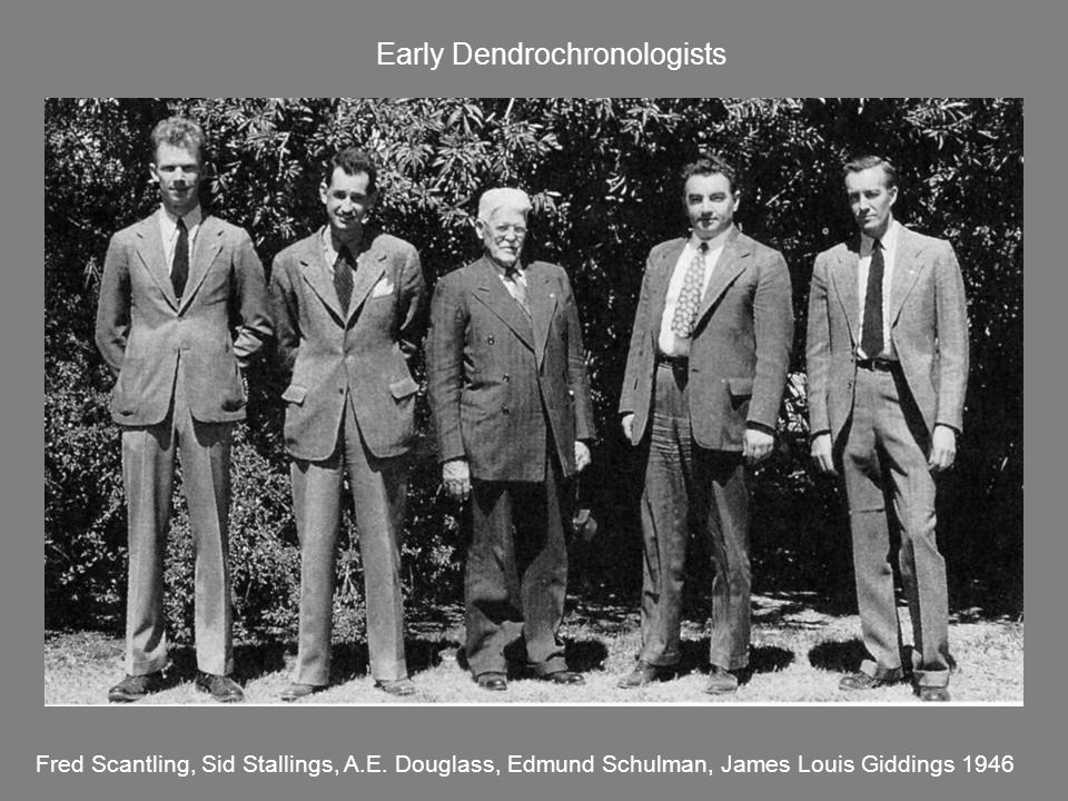 Early Dendrochronologists Fred Scantling, Sid Stallings, A.E. Douglass, Edmund Schulman, James Louis Giddings 1946