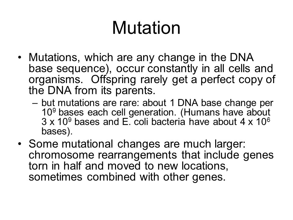 Mutation Mutations, which are any change in the DNA base sequence), occur constantly in all cells and organisms.