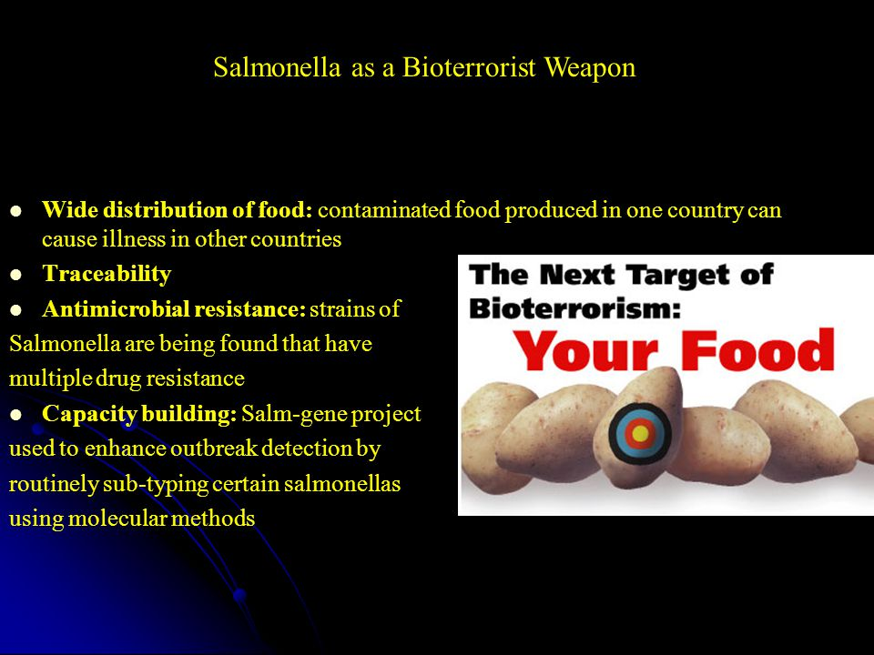 Wide distribution of food: contaminated food produced in one country can cause illness in other countries Traceability Antimicrobial resistance: strains of Salmonella are being found that have multiple drug resistance Capacity building: Salm-gene project used to enhance outbreak detection by routinely sub-typing certain salmonellas using molecular methods Salmonella as a Bioterrorist Weapon