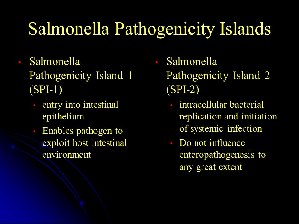 Salmonella Pathogenicity Islands Salmonella Pathogenicity Island 1 (SPI-1) entry into intestinal epithelium Enables pathogen to exploit host intestinal environment Salmonella Pathogenicity Island 2 (SPI-2) intracellular bacterial replication and initiation of systemic infection Do not influence enteropathogenesis to any great extent