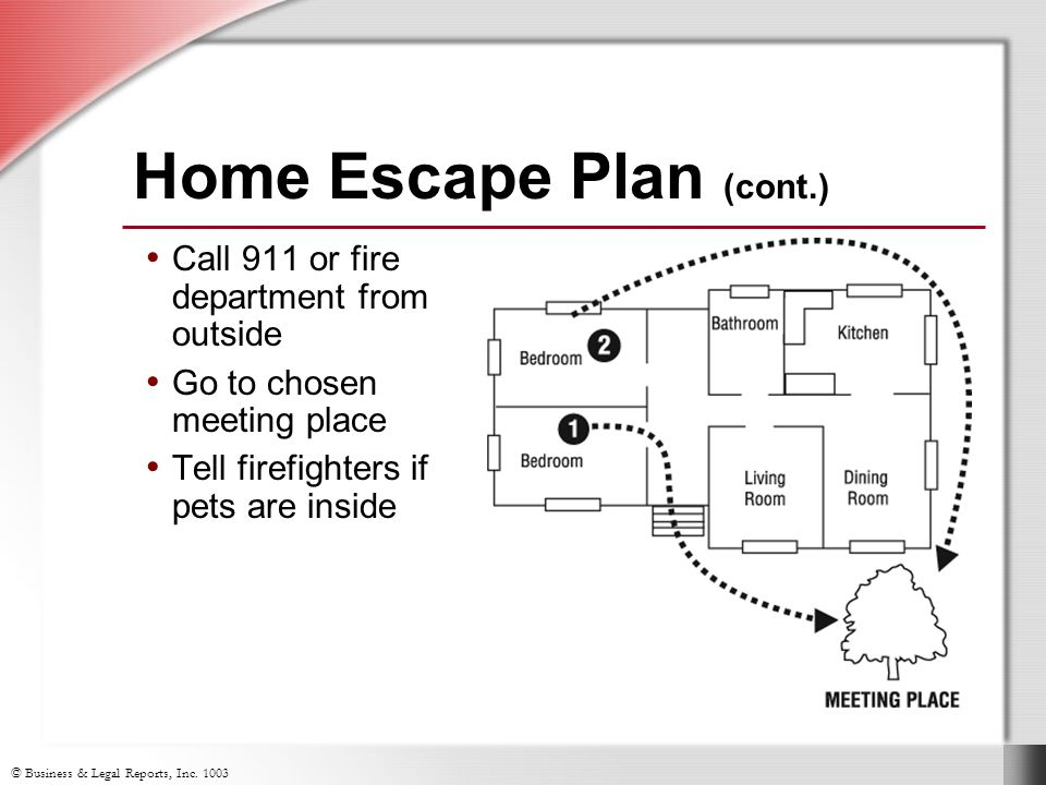 Home Escape Plan (cont.) Call 911 or fire department from outside Go to chosen meeting place Tell firefighters if pets are inside