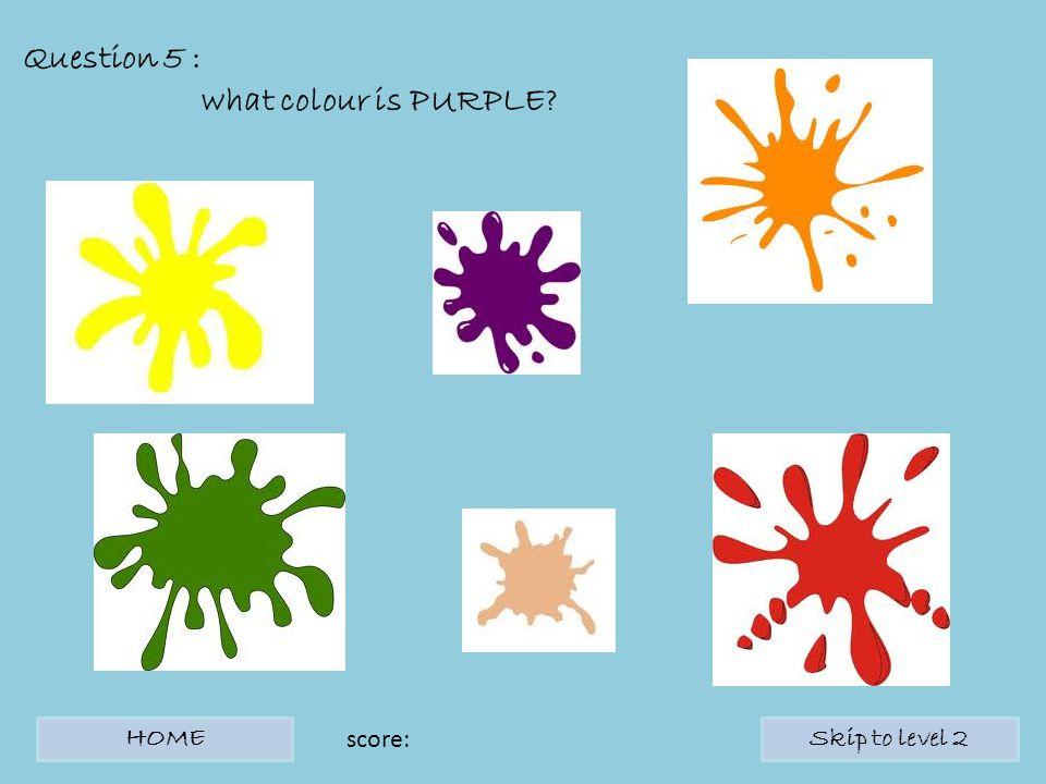 Question 5 : what colour is PURPLE? HOMESkip to level 2 score: