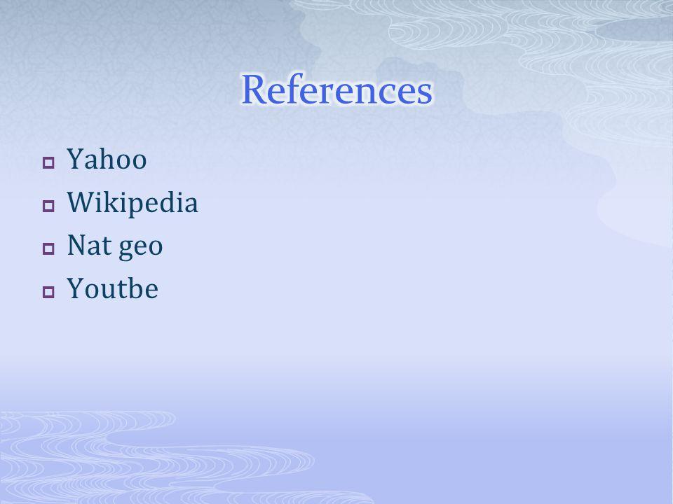  Yahoo  Wikipedia  Nat geo  Youtbe