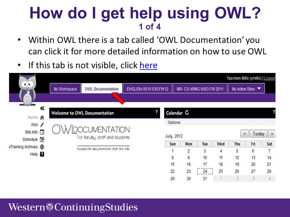 How do I get help using OWL.