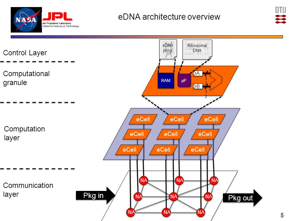 NA eDNA architecture overview 5 3232 3232 A A B B μP RAM Load S0,00 Jump Z, SP Load S0,01 Ribosomal DNA Pkg in Pkg out Communication layer Control Layer Computational granule Computation layer eCell 00101 01001 00110 eDNA prog.