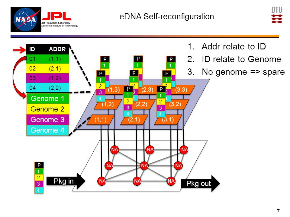 eDNA Self-healing 1.Fault-detection: TMR-based algorithm: Cell C and spare detects fault at Cell F 2.Spare localization: Cell C locates closest spare-cell K 3.Self-reconfiguration: Broadcast table update –Effects: Function & Communication restoration and Isolation of faulty cell 1.Functionality restoration: Moved to (3,1): 2.Communication restoration: Now going to (3,1) instead of (1,1) 3.Isolation: No one communicates with (1,1) 8 (1,3) (1,2) (1,1) (2,2) (2,1) (3,2) (3,1) (2,3) (3,3) P P 1 1 2 2 3 3 4 4 P P 1 1 2 2 3 3 4 4 P P 1 1 2 2 3 3 4 4 P P 1 1 2 2 3 3 4 4 P P 1 1 2 2 3 3 4 4 P P 1 1 2 2 3 3 4 4 P P 1 1 2 2 3 3 4 4 P P 1 1 2 2 3 3 4 4 P P 1 1 2 2 3 3 4 4 IDADDR 01(1,1) 02(2,1) 03(1,2) 04(2,2) IDADDR 01(3,1) 02(2,1) 03(1,2) 04(2,2) Pre-fault Self-healed Genome 1 Genome 2 Genome 3 Genome 4 (3,1)
