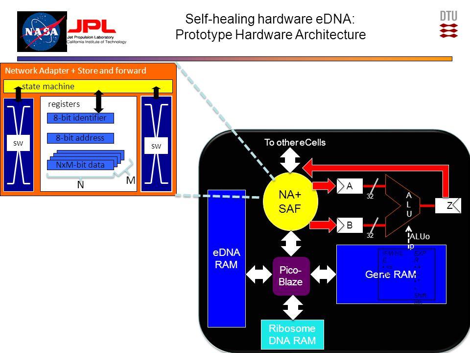 Gene RAM 32 ALUo p 32 A A B B ALUALU Z IF/WHIL E <= != EXP R + - * Shift etc.