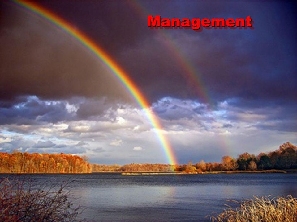 ManagementManagement