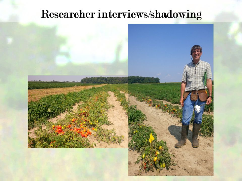 Researcher interviews/shadowing
