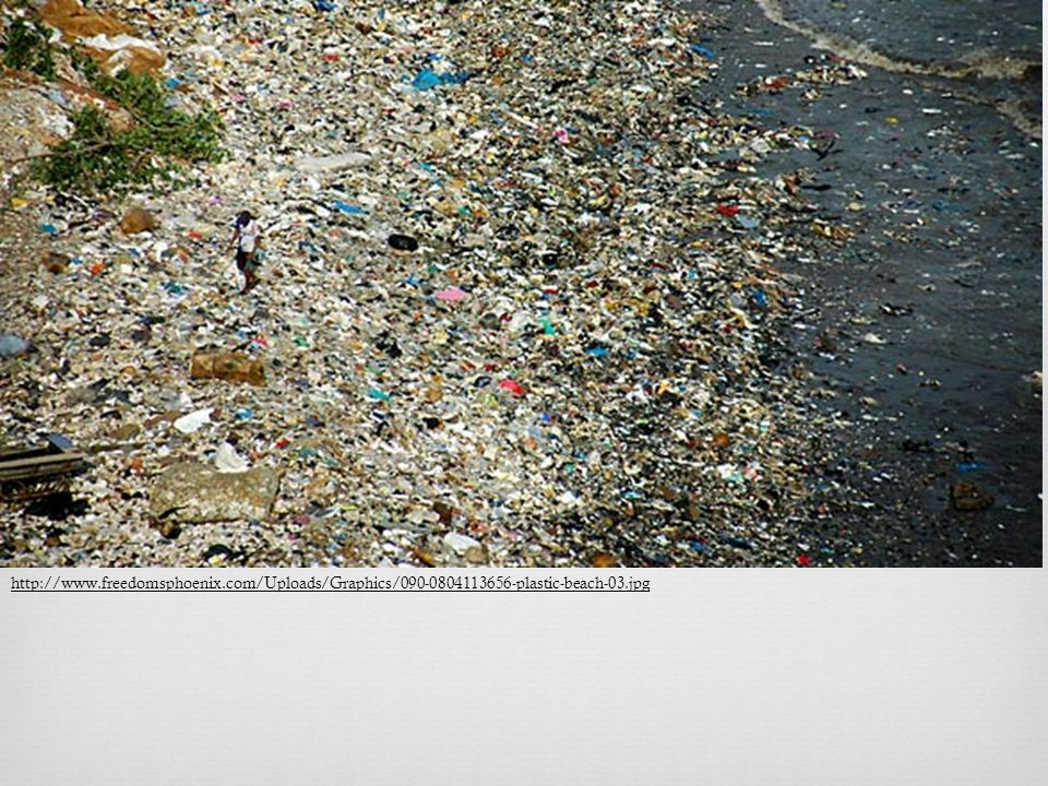 http://www.freedomsphoenix.com/Uploads/Graphics/090-0804113656-plastic-beach-03.jpg