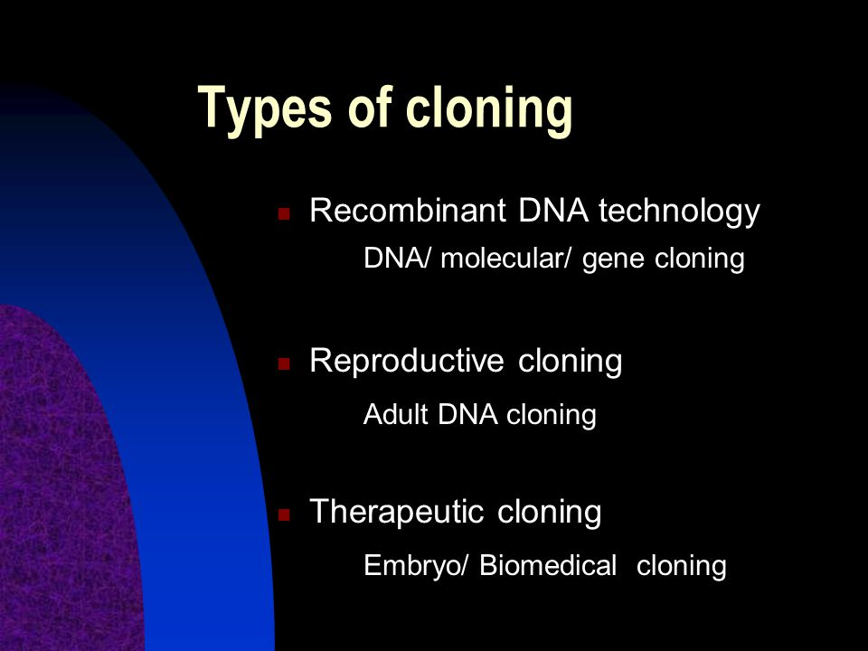 Instrumentality Cloning raises a number of concerns arising from its consequences, of which instrumentality and risk are of especial importance.