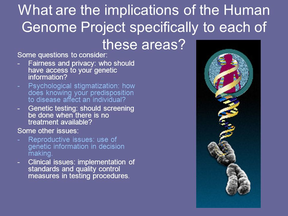 What are the implications of the Human Genome Project specifically to each of these areas? Some questions to consider: -Fairness and privacy: who shou