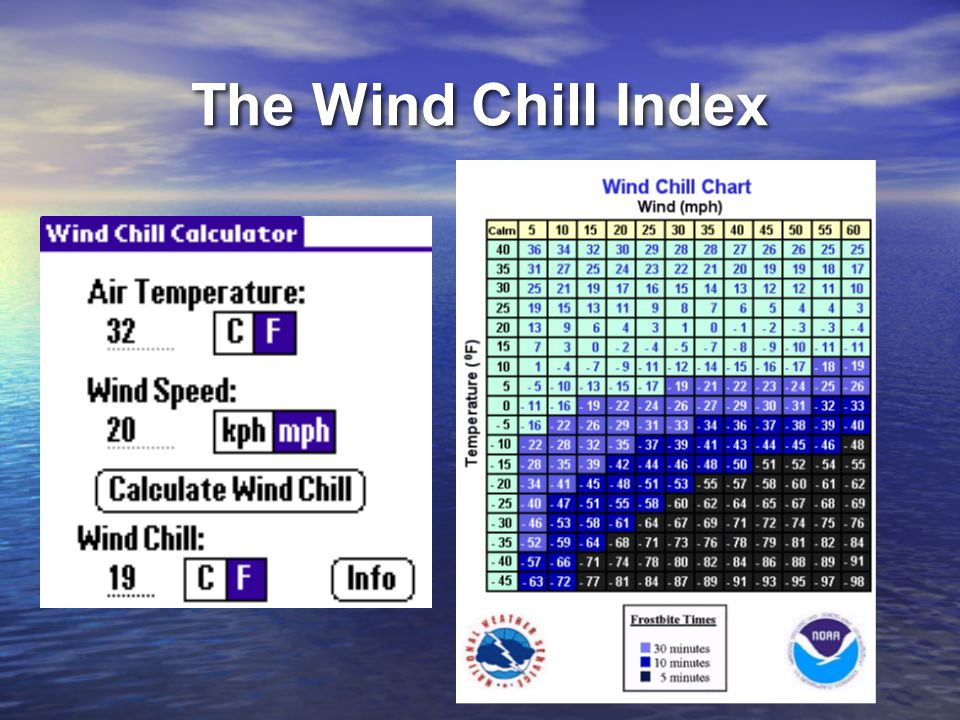 The Wind Chill Index