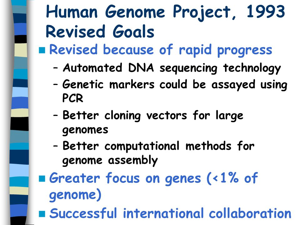 Human Genome Project, 1998 New Five Year Plan Finish complete human genome sequence by 2003 (50th anniversary of double helix by Watson and Crick) –Draft sequence finished in July, 2000 –'Complete' sequence to be published in 2001