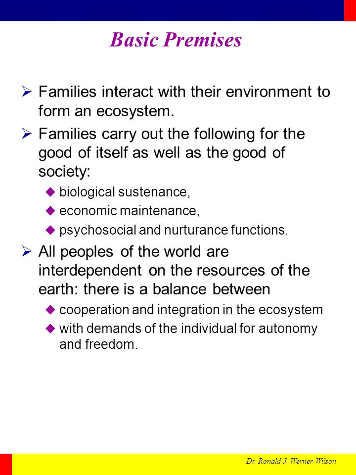 Dr.Ronald J. Werner-Wilson Assumptions:  Families and the environment are interdependent.