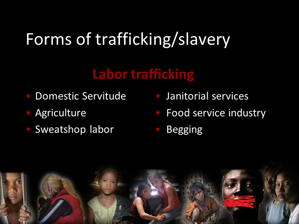 Forms of trafficking/slavery Domestic Servitude Agriculture Sweatshop labor Janitorial services Food service industry Begging Labor trafficking