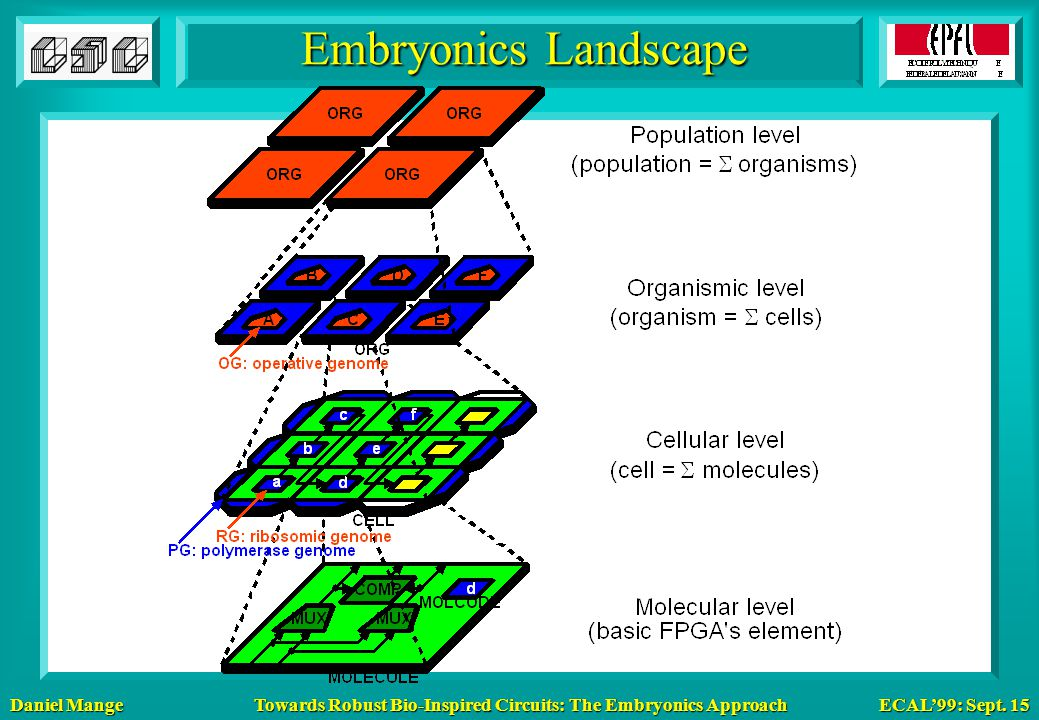 Daniel Mange ECAL'99: Sept. 15 Towards Robust Bio-Inspired Circuits: The Embryonics Approach Embryonics Landscape