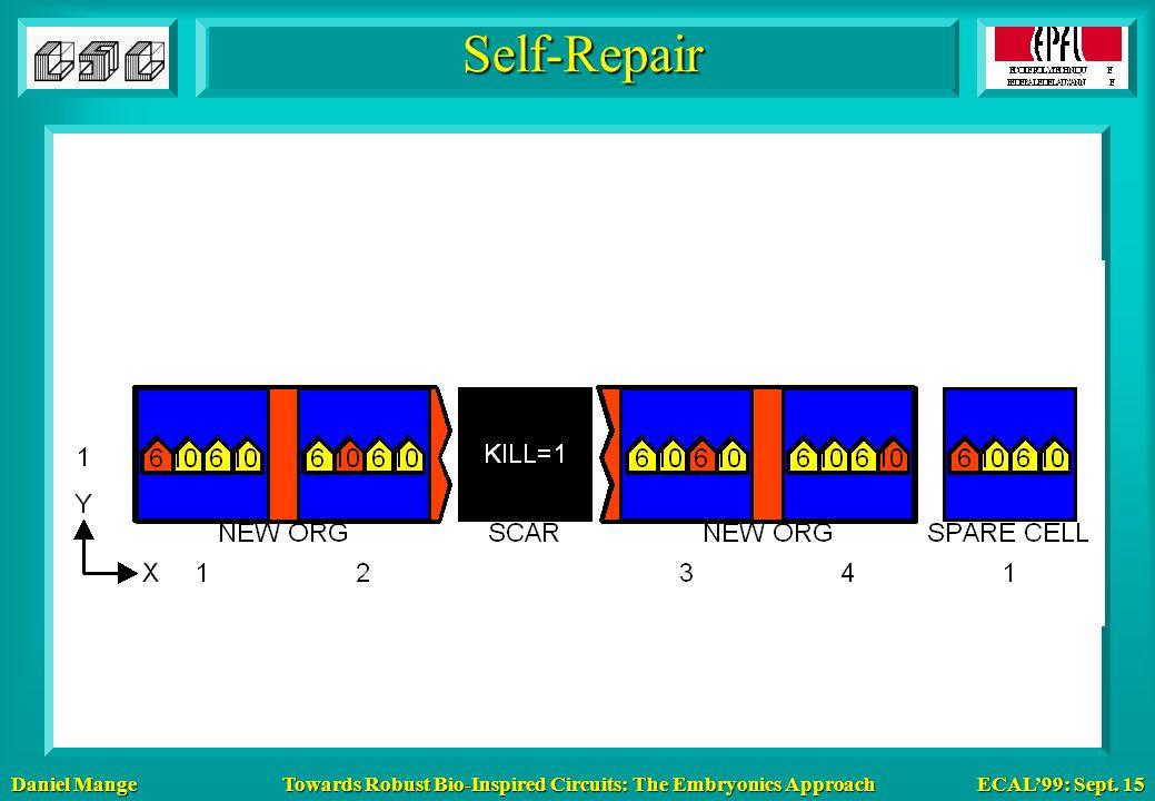 Daniel Mange ECAL'99: Sept. 15 Towards Robust Bio-Inspired Circuits: The Embryonics Approach Self-Repair