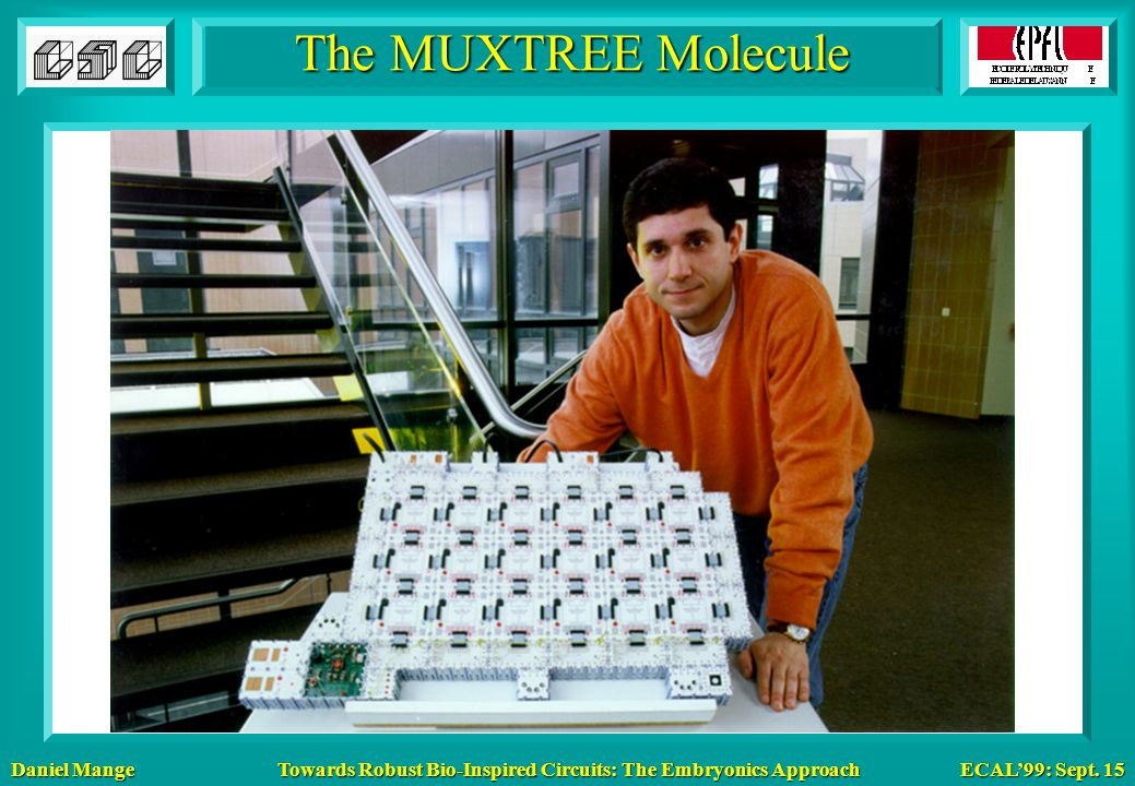 Daniel Mange ECAL'99: Sept. 15 Towards Robust Bio-Inspired Circuits: The Embryonics Approach The MUXTREE Molecule