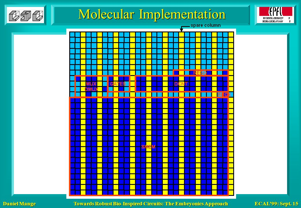 Daniel Mange ECAL'99: Sept. 15 Towards Robust Bio-Inspired Circuits: The Embryonics Approach Molecular Implementation