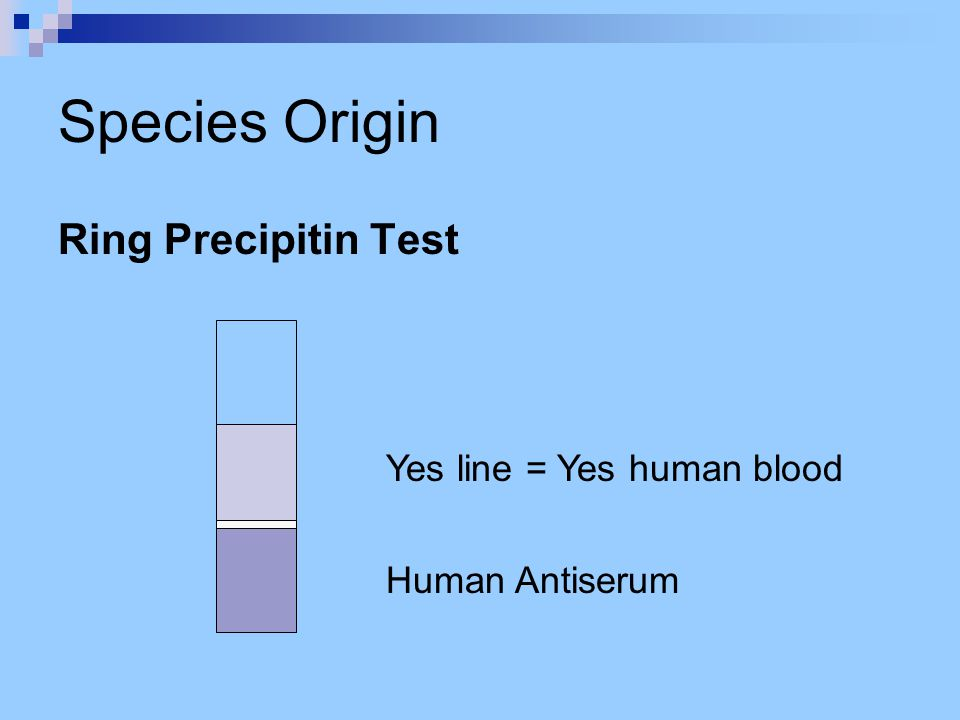 Species Origin Ring Precipitin Test Human Antiserum Yes line = Yes human blood