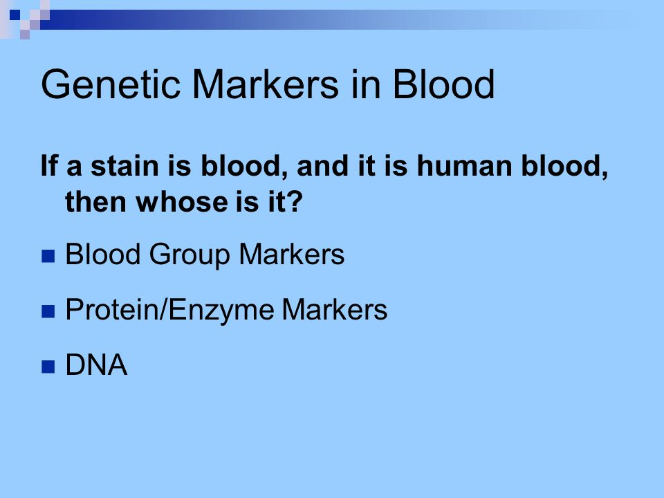 Genetic Markers in Blood If a stain is blood, and it is human blood, then whose is it? Blood Group Markers Protein/Enzyme Markers DNA