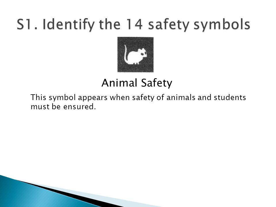 Animal Safety This symbol appears when safety of animals and students must be ensured.