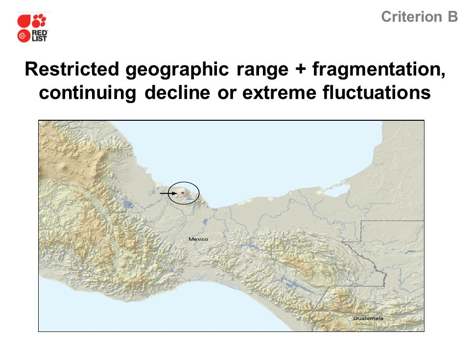 Criterion B Restricted geographic range + fragmentation, continuing decline or extreme fluctuations