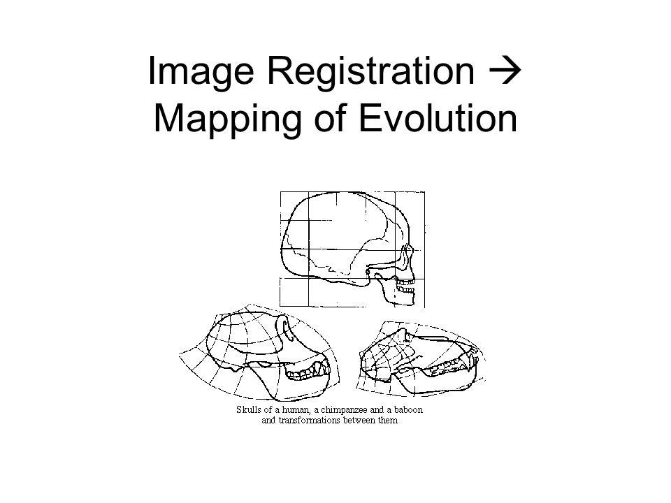 Image Registration  Mapping of Evolution