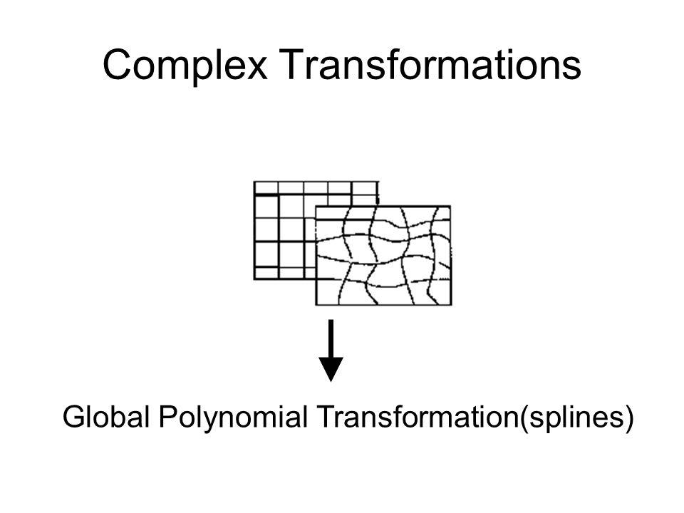 Complex Transformations Global Polynomial Transformation(splines)