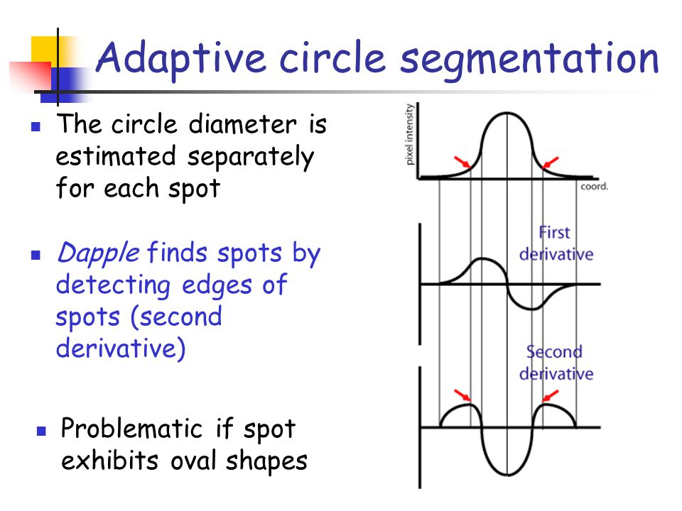 Adaptive circle segmentation The circle diameter is estimated separately for each spot Dapple finds spots by detecting edges of spots (second derivati