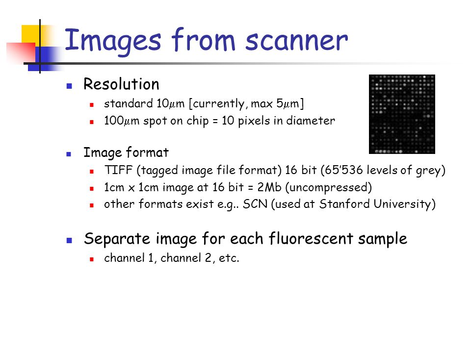 Images from scanner Resolution standard 10  m [currently, max 5  m] 100  m spot on chip = 10 pixels in diameter Image format TIFF (tagged image fil