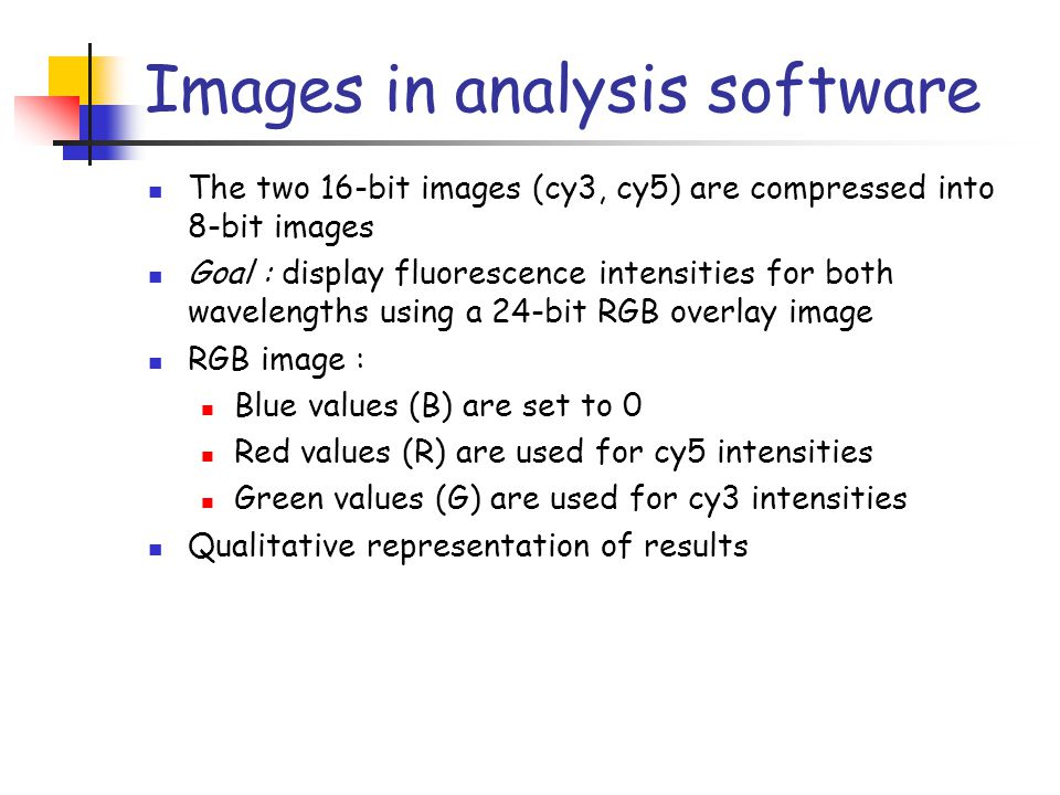 Images in analysis software The two 16-bit images (cy3, cy5) are compressed into 8-bit images Goal : display fluorescence intensities for both wavelen