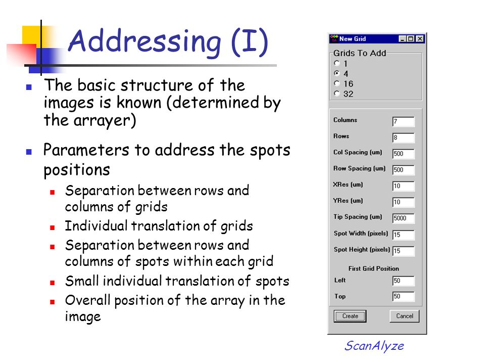 ScanAlyze Parameters to address the spots positions Separation between rows and columns of grids Individual translation of grids Separation between ro
