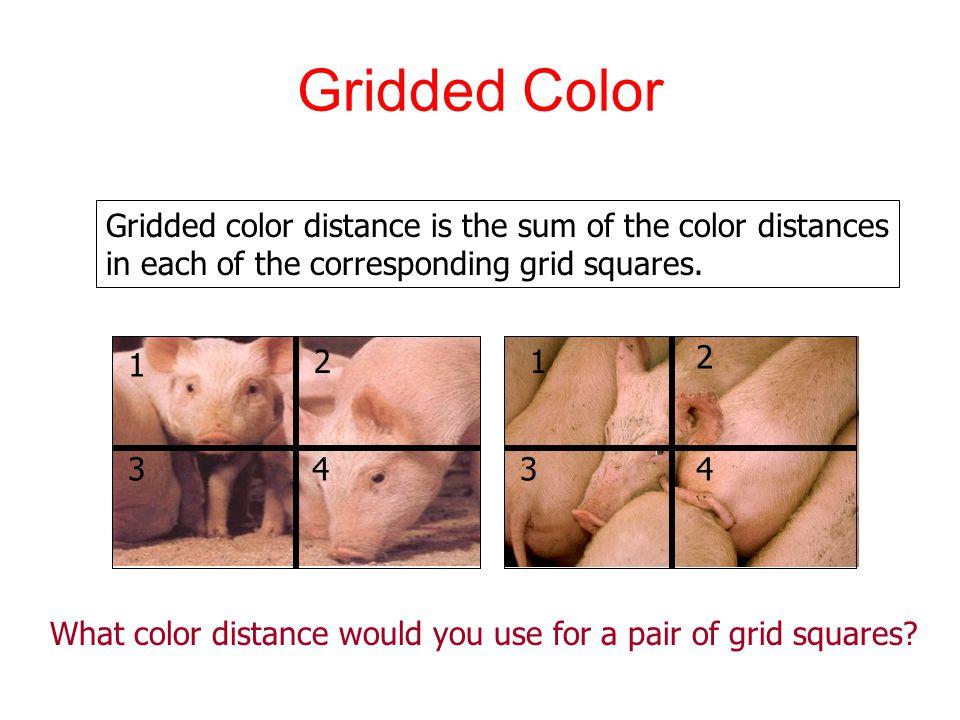 Gridded Color Gridded color distance is the sum of the color distances in each of the corresponding grid squares.