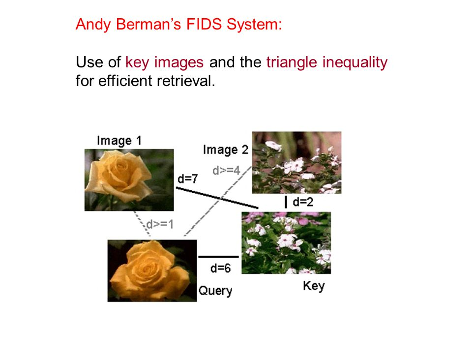 Andy Berman's FIDS System: Use of key images and the triangle inequality for efficient retrieval.