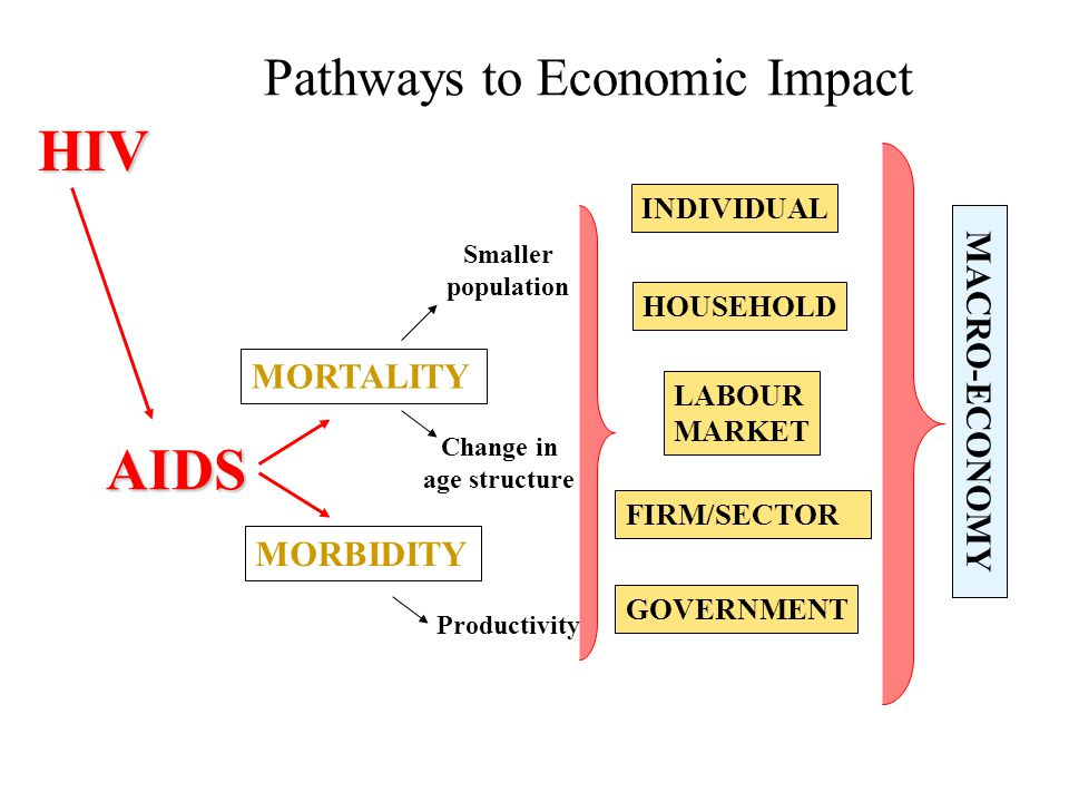 Pathways to Economic Impact MORTALITY MORBIDITY Smaller population Change in age structure INDIVIDUAL FIRM/SECTOR GOVERNMENT MACRO-ECONOMY HOUSEHOLD LABOUR MARKET AIDSHIV Productivity