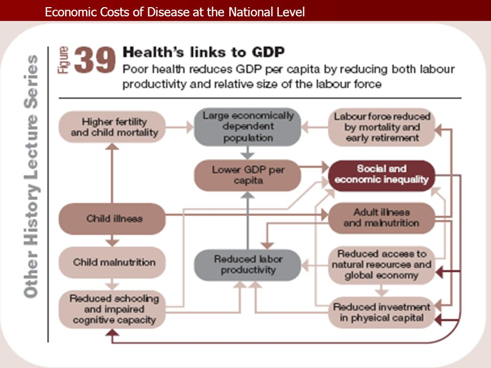 Economic Costs of Disease at the National Level