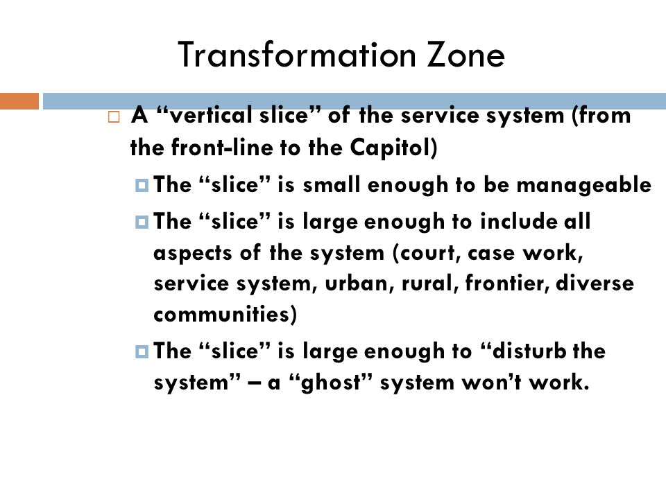 Transformation Zone  A vertical slice of the service system (from the front-line to the Capitol)  The slice is small enough to be manageable  The slice is large enough to include all aspects of the system (court, case work, service system, urban, rural, frontier, diverse communities)  The slice is large enough to disturb the system – a ghost system won't work.