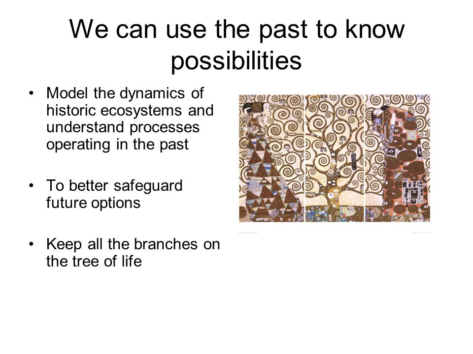 We can use the past to know possibilities Model the dynamics of historic ecosystems and understand processes operating in the past To better safeguard future options Keep all the branches on the tree of life