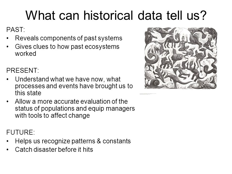 What can historical data tell us? PAST: Reveals components of past systems Gives clues to how past ecosystems worked PRESENT: Understand what we have
