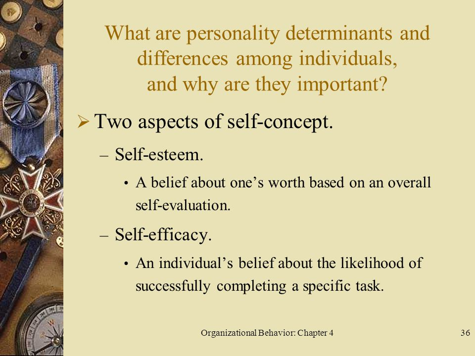 Organizational Behavior: Chapter 436 What are personality determinants and differences among individuals, and why are they important.