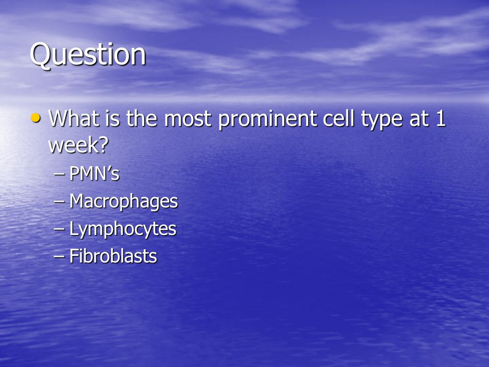 Question What is the most prominent cell type at 1 week? What is the most prominent cell type at 1 week? –PMN's –Macrophages –Lymphocytes –Fibroblasts