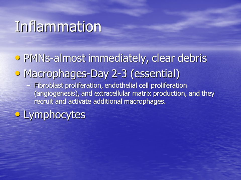 Inflammation PMNs-almost immediately, clear debris PMNs-almost immediately, clear debris Macrophages-Day 2-3 (essential) Macrophages-Day 2-3 (essentia