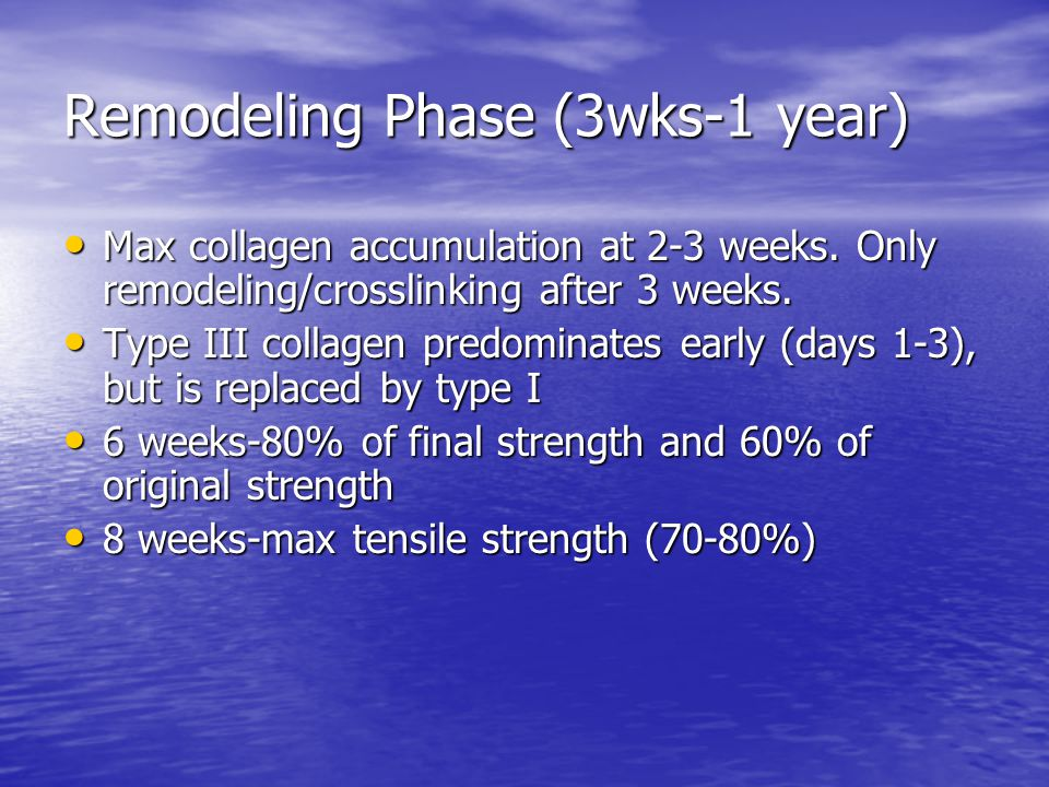 Remodeling Phase (3wks-1 year) Max collagen accumulation at 2-3 weeks. Only remodeling/crosslinking after 3 weeks. Max collagen accumulation at 2-3 we