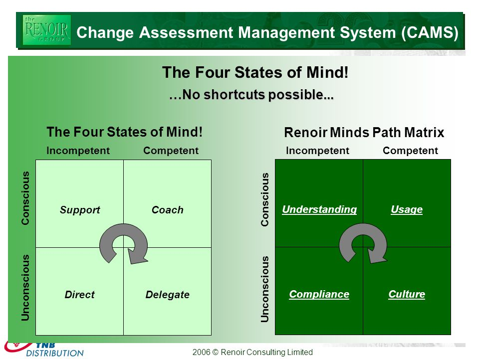 2006 © Renoir Consulting Limited Conscious Unconscious IncompetentCompetent Direct Delegate SupportCoach The Four States of Mind.
