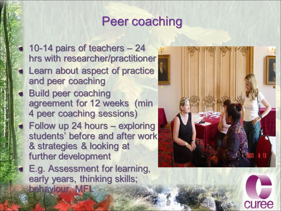 Peer coaching 10-14 pairs of teachers – 24 hrs with researcher/practitioner Learn about aspect of practice and peer coaching Build peer coaching agreement for 12 weeks (min 4 peer coaching sessions) Follow up 24 hours – exploring students' before and after work & strategies & looking at further development E.g.
