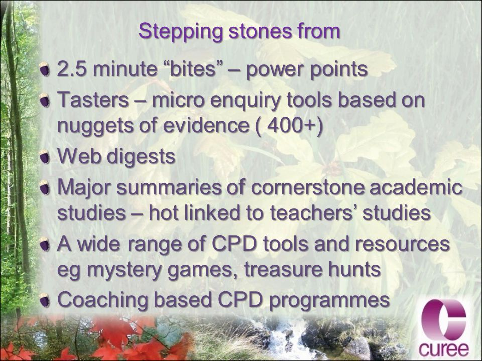 Stepping stones from 2.5 minute bites – power points Tasters – micro enquiry tools based on nuggets of evidence ( 400+) Web digests Major summaries of cornerstone academic studies – hot linked to teachers' studies A wide range of CPD tools and resources eg mystery games, treasure hunts Coaching based CPD programmes
