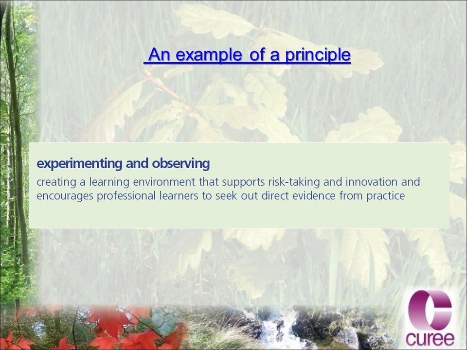 An example of a principle An example of a principle